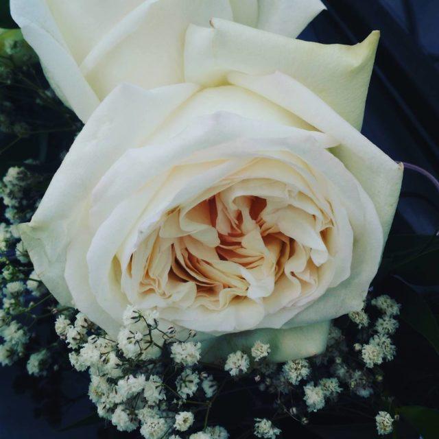 Superbe mariage en avant pour faire la fiesta!!! mariage weeddinghellip